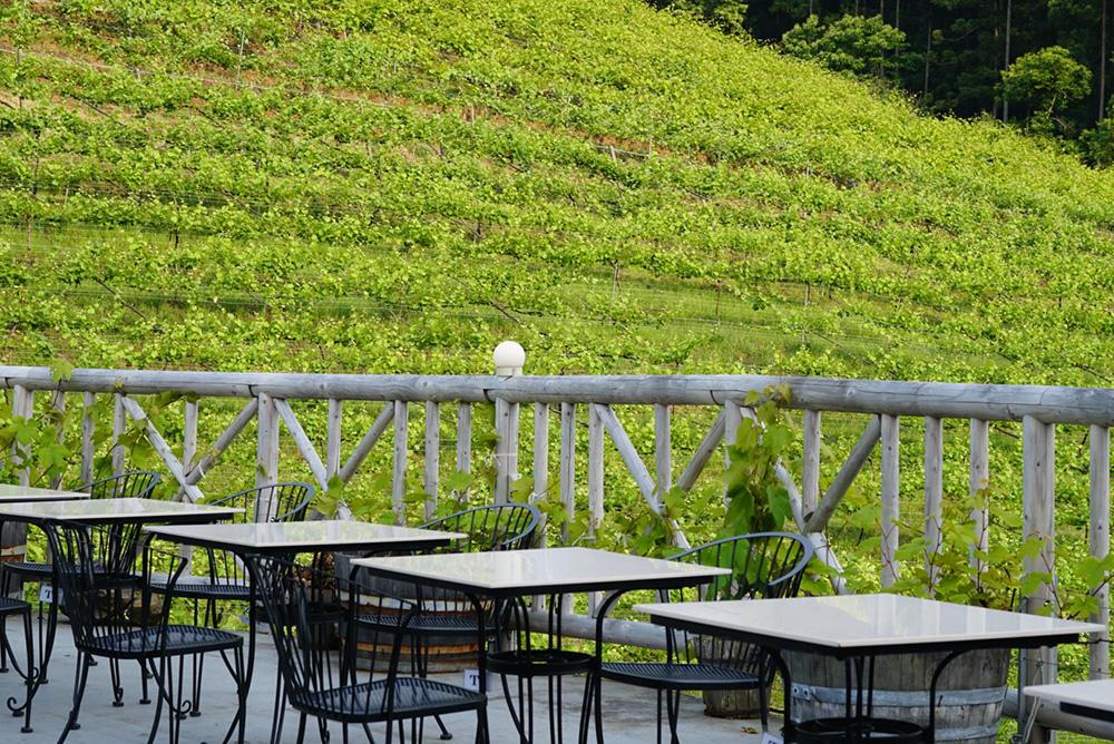 ココ・ファーム・ワイナリー 葡萄畑 オープンカフェ