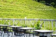 ココ・ファーム・ワイナリー ワイン 栃木県足利市