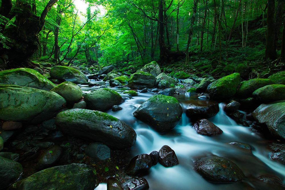 尚仁沢湧水群 岩と水と森 栃木県塩谷郡塩谷町