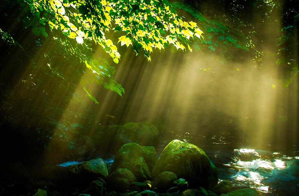 尚仁沢湧水群 岩と光 栃木県塩谷郡塩谷町