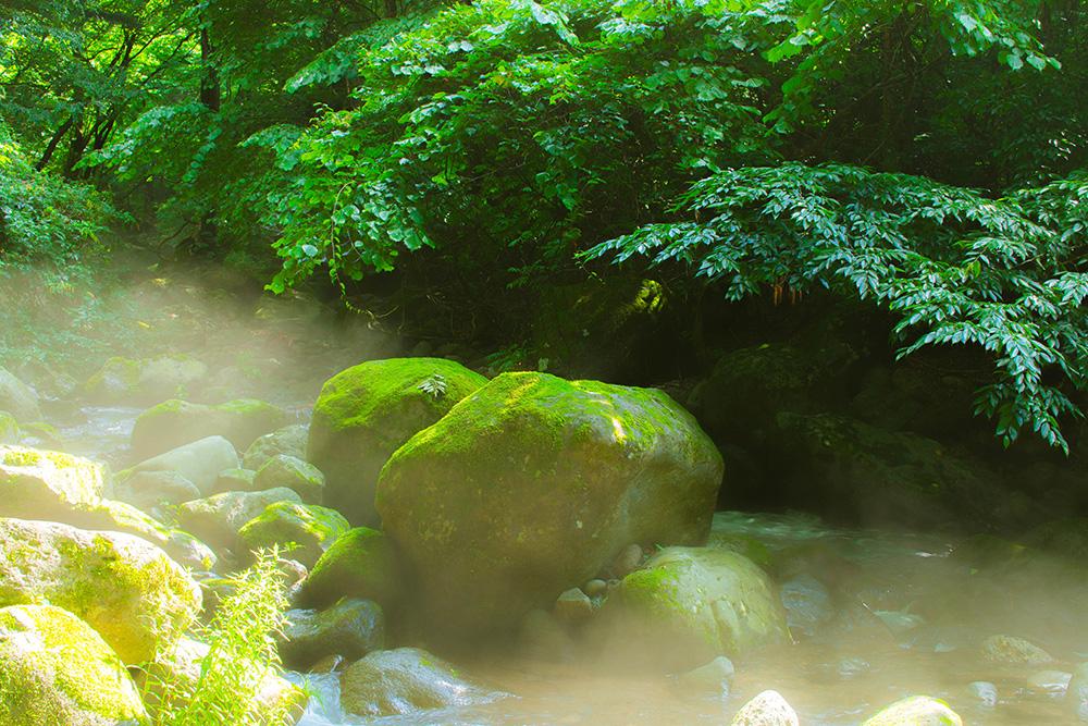 尚仁沢湧水群 岩と森と光 栃木県塩谷郡塩谷町