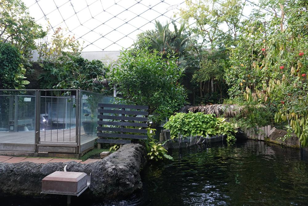 なかがわ水遊園 アマゾンエリア2 栃木県大田原市