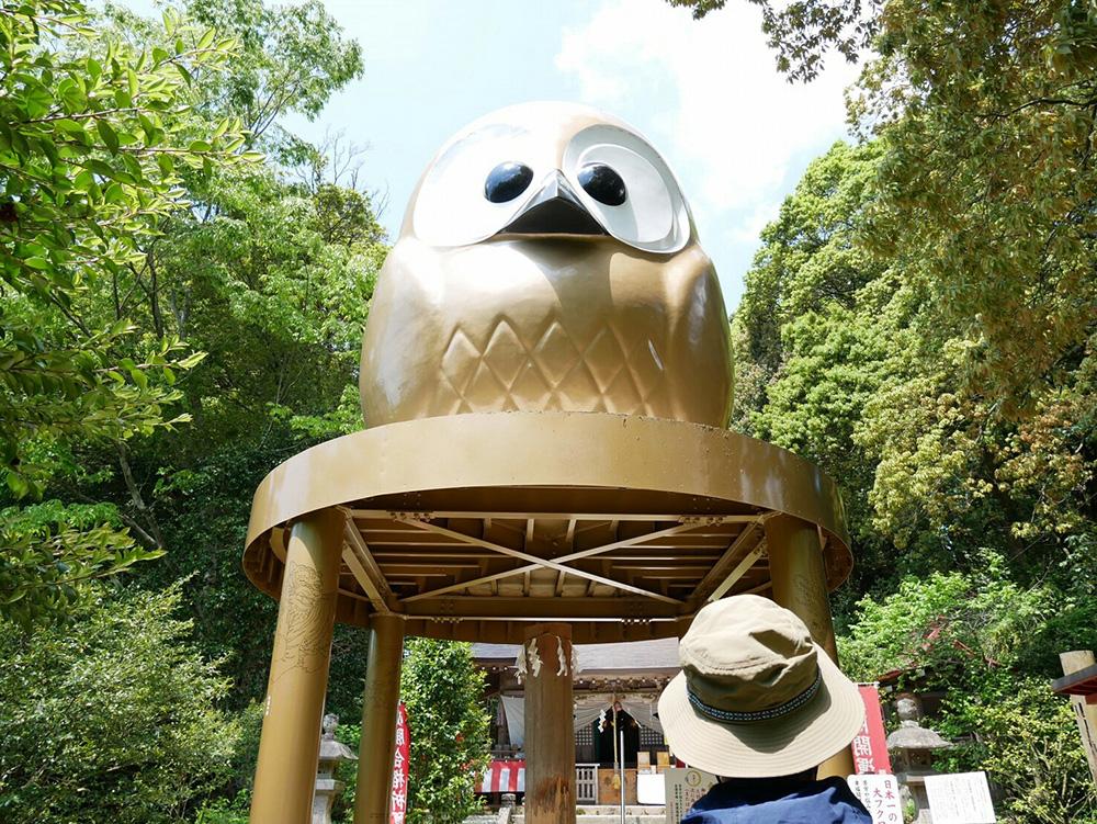 梟 鷲子山上神社 栃木県 とちぎのしゅし