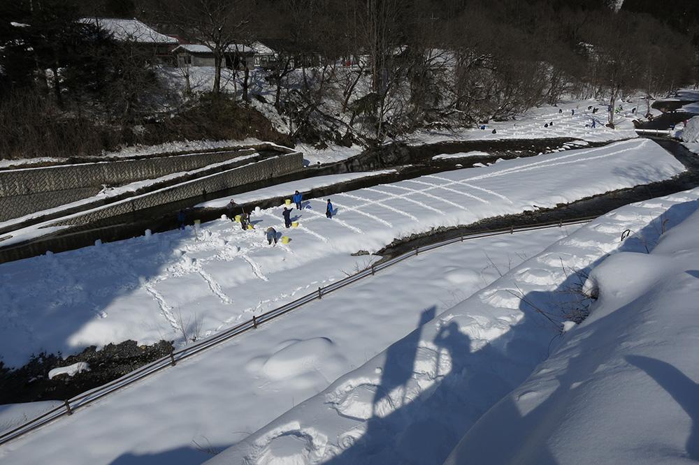 かまくらの雪 湯西川温泉かまくら祭り(日光市) 栃木県 とちぎのしゅし