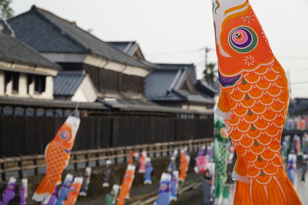 色鮮やか 鯉のぼり 蔵の街遊覧船 うずま川 栃木市 観光 とちぎのしゅし