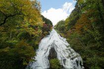 竜頭滝|戦場ヶ原(日光)トレッキング とちぎのしゅし 観光