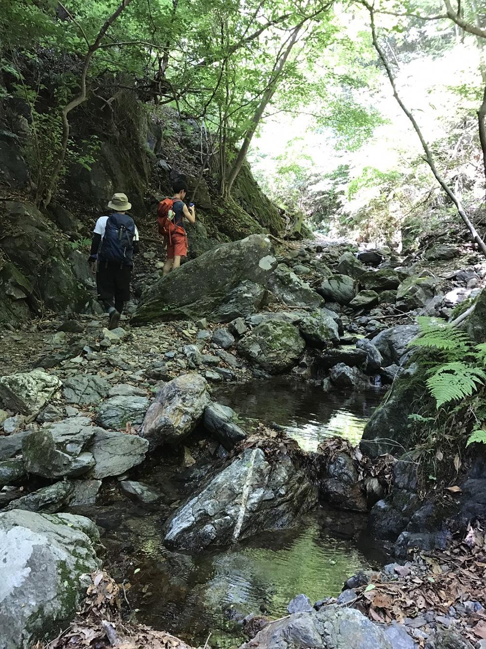 小川 仙人ヶ岳(足利市)動画|栃木のゆる~い登山部 とちぎのしゅし