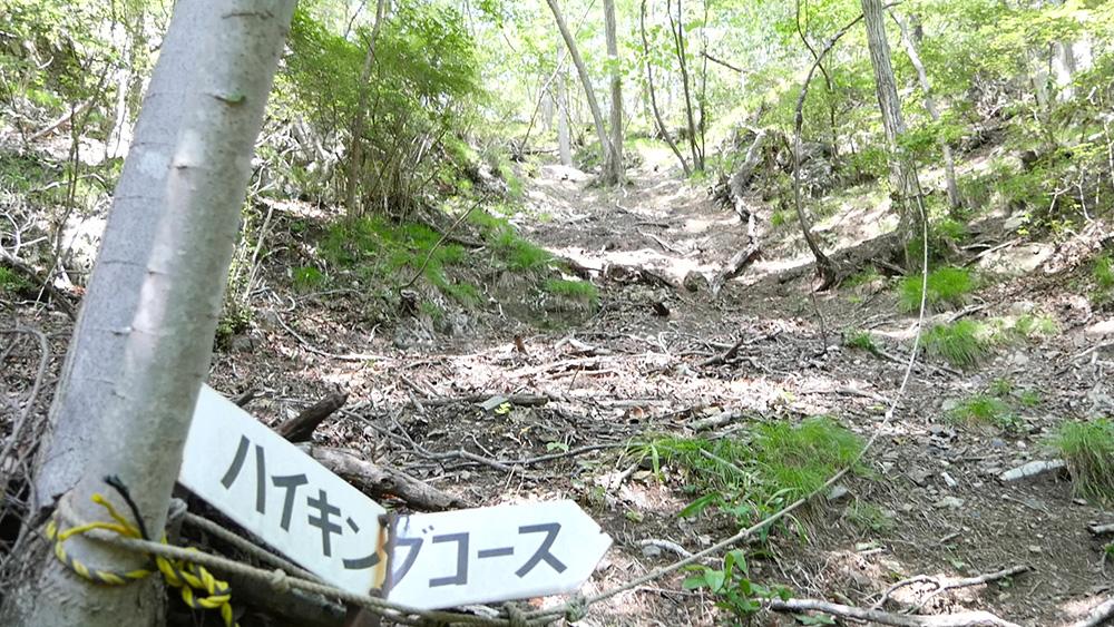ハイキングコース 仙人ヶ岳(足利市)動画|栃木のゆる~い登山部 とちぎのしゅし