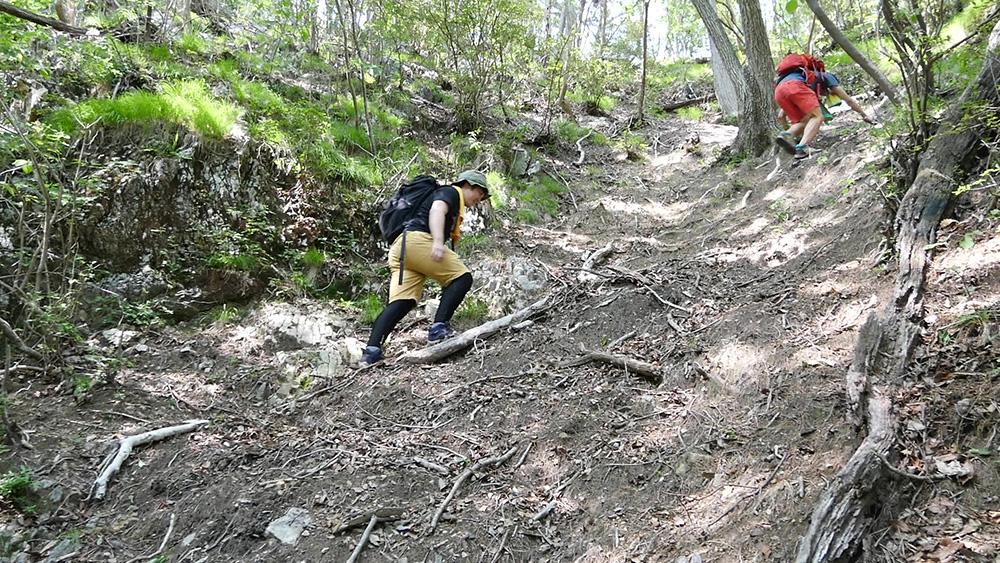 急な坂 仙人ヶ岳(足利市)動画|栃木のゆる~い登山部 とちぎのしゅし
