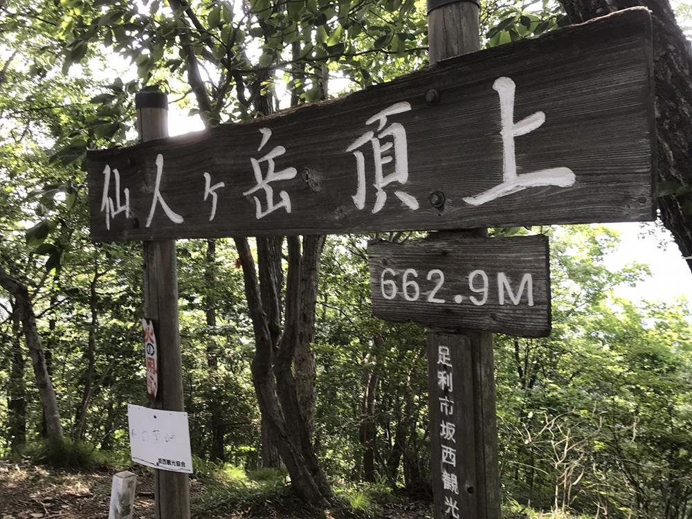 山頂看板 仙人ヶ岳(足利市)動画|栃木のゆる~い登山部 とちぎのしゅし