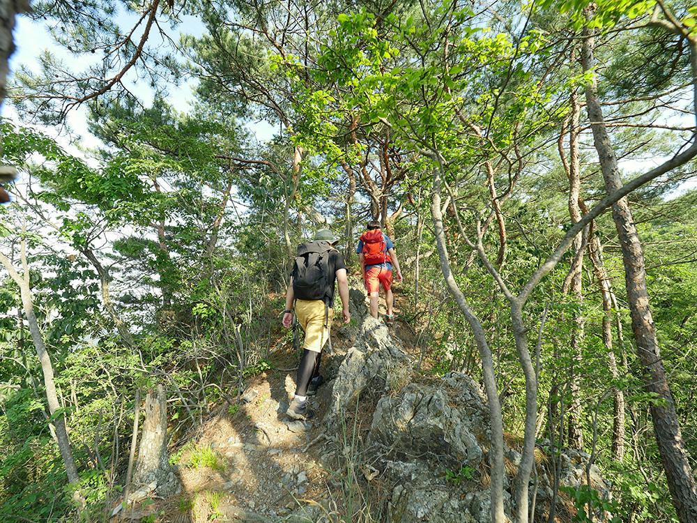 山道 メンバー 仙人ヶ岳(足利市)動画|栃木のゆる~い登山部 とちぎのしゅし