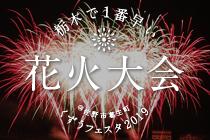 栃木県で一番早い花火大会 くずうフェスタ 佐野市 とちぎのしゅし